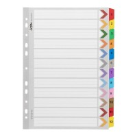 Icon Cardboard Indices with Reinforced Tabs 1-12 Coloured